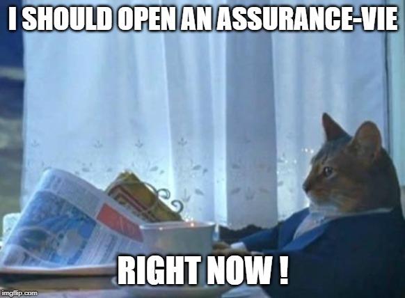 Assurance vie cat